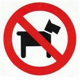 Pictogram No Dogs ( voorzijde )